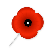 Drawn poppy american legion Post Auxiliary Robert Legion Contest