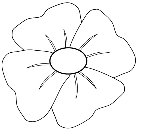 Drawn poppy anzac poppy Remembrance Poppy You Remembrance Can