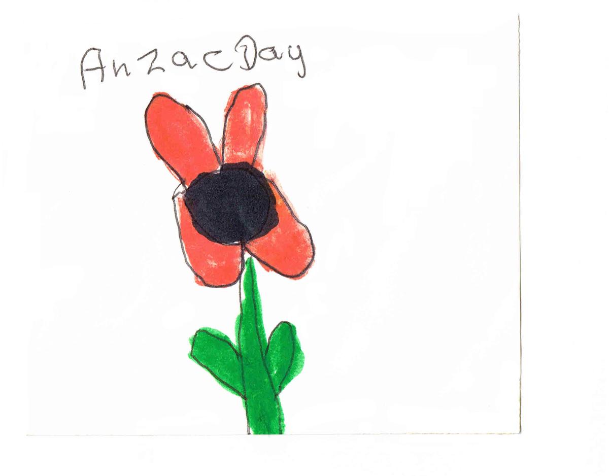 Drawn poppy anzac poppy Dunedin Day if? 'Anzac Butcher