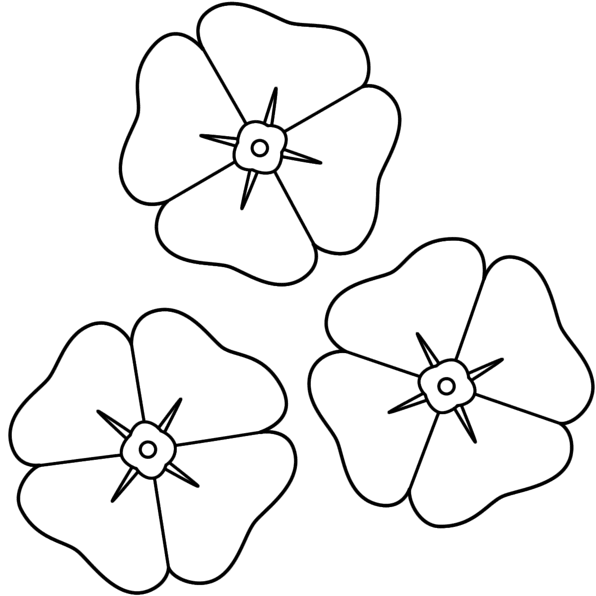 Drawn poppy anzac poppy Coloring Poppies (Anzac Coloring Day)