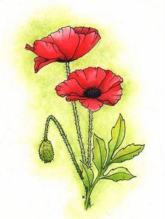 Drawn poppy anzac poppy Be can  like in