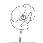 Drawn poppy beginner Com Step by How to