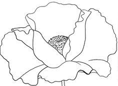 Drawn poppy beginner  Free PDF Poppy Traceable