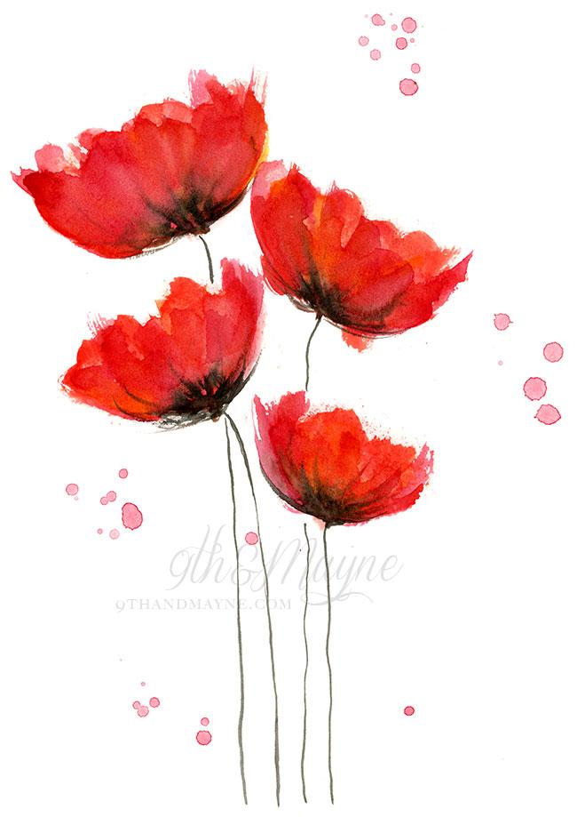 Drawn poppy beginner 3 Poppies My Watercolor Poppies