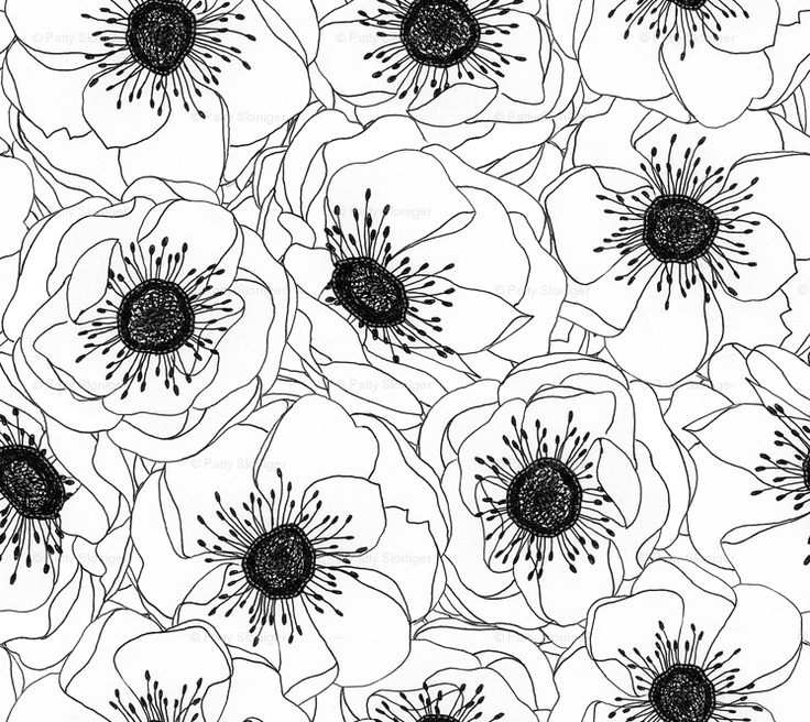 Drawn poppy black and white Spoonflower white white drawing and