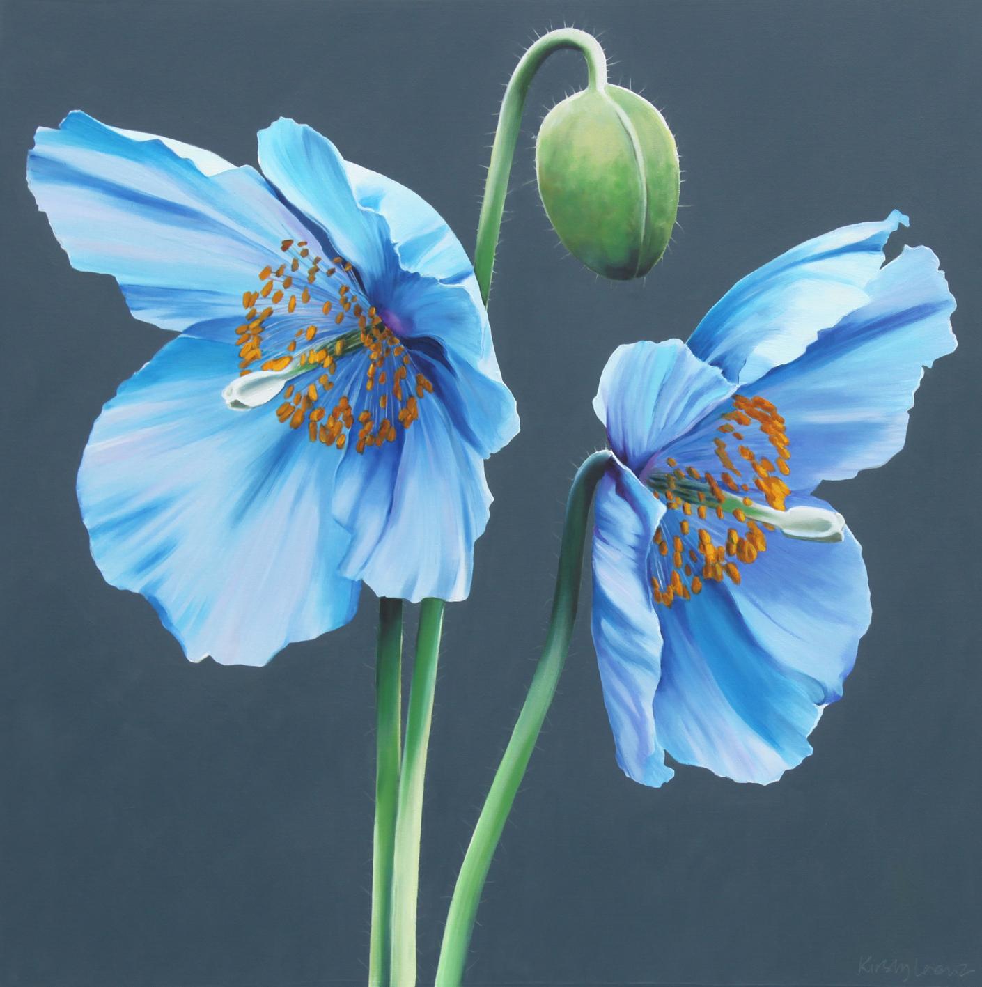 Drawn poppy blue poppy Painting Blue and poppy Pinterest