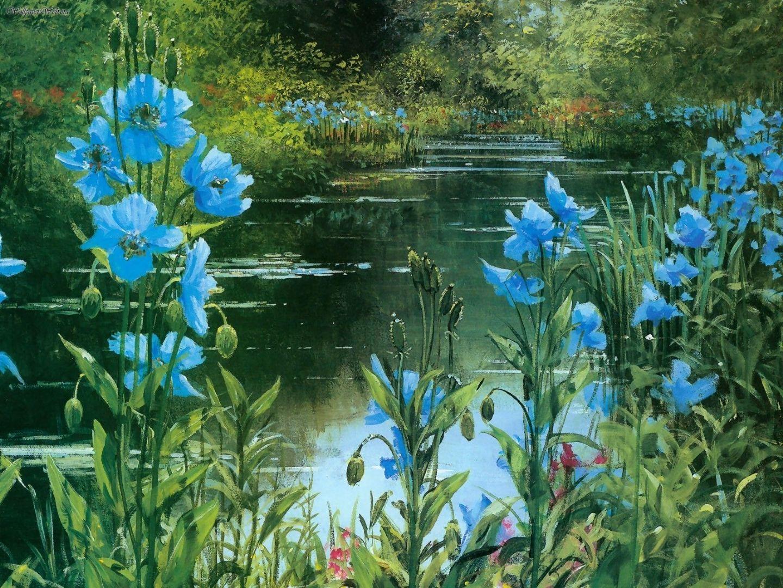 Drawn poppy blue poppy Painting: 1440x1080 Peter 1080i Blue