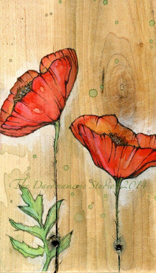 Drawn poppy canvas Art Poppies watercolor Best on