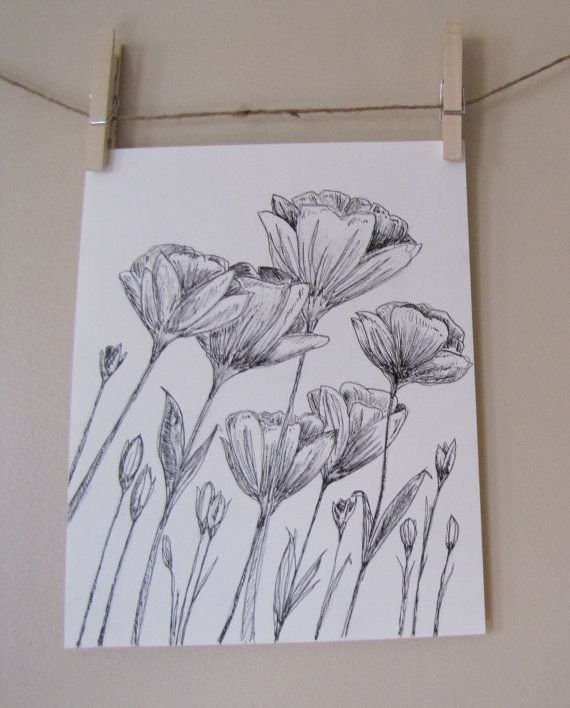 Drawn poppy charcoal On by Pinterest Poppies best