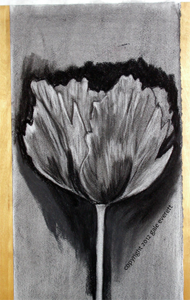 Drawn poppy charcoal Pulling with totally art Sticks