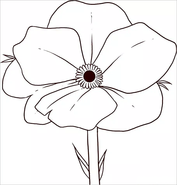 Drawn poppy coloring Poppy Free Page Printable Flower