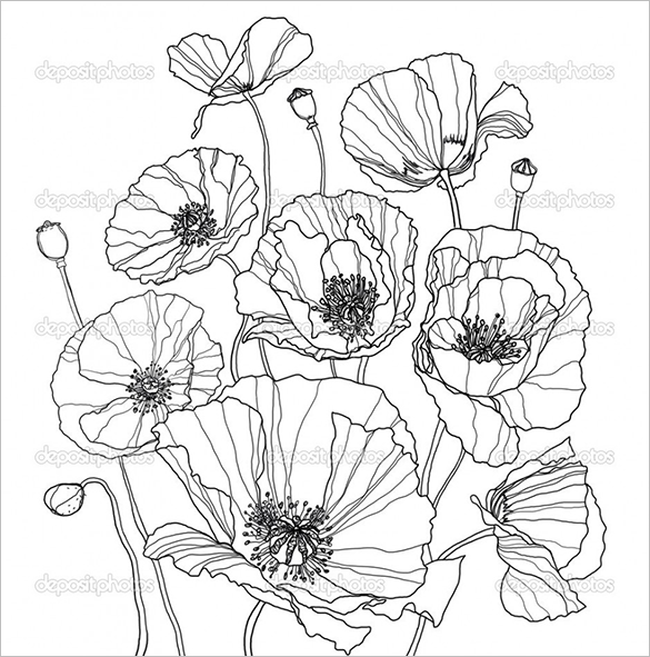 Drawn poppy coloring Coloring Printable 21+ Word Poppy
