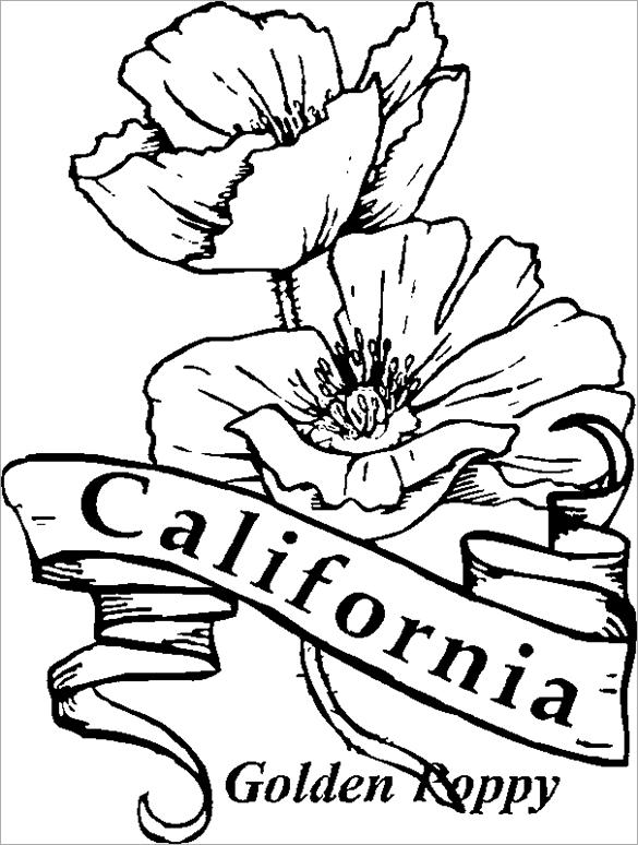Drawn poppy coloring Poppy Free Page Printable Flag