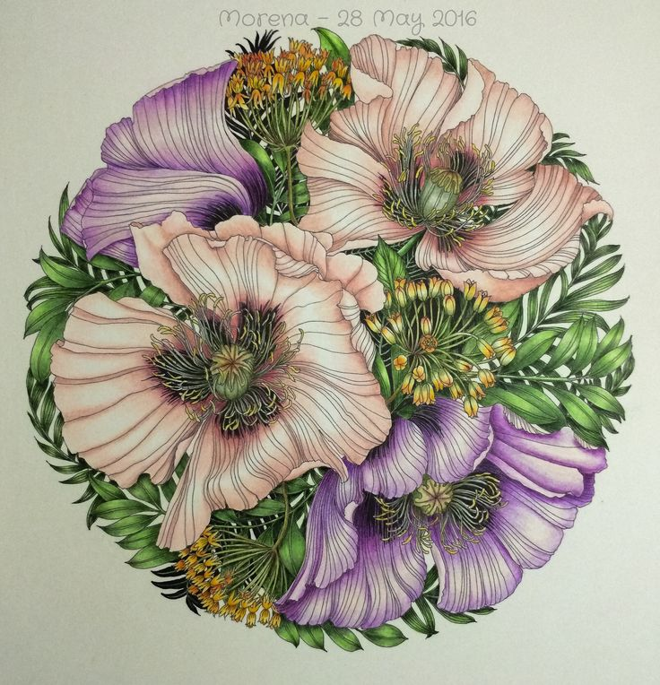 Drawn poppy colourful Coloring best #leiladuly Books on