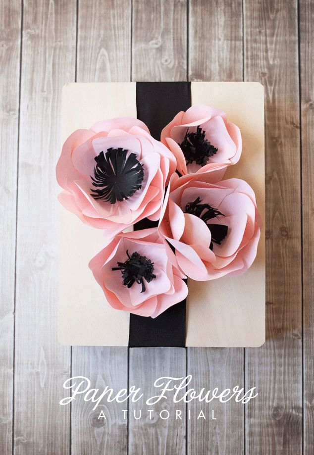Drawn poppy different flower Pinterest 25+ Flower Best template