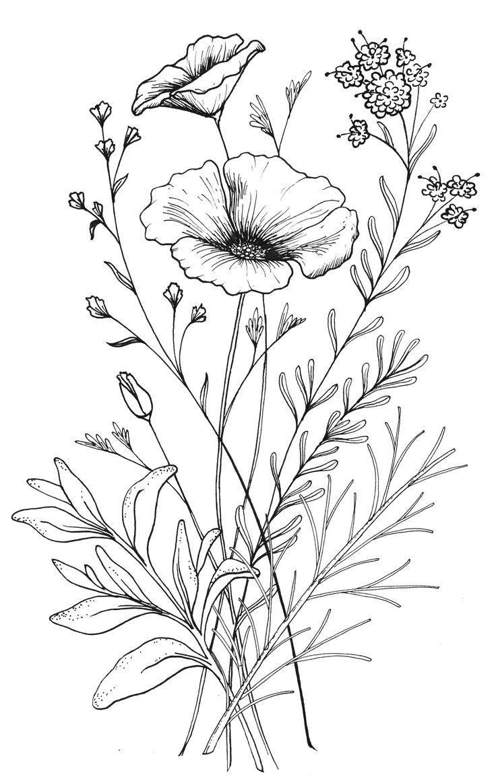 Drawn poppy different flower Ideas · Design CA Tattoo