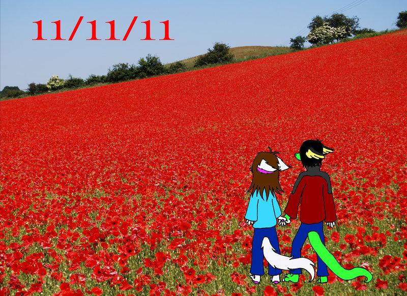 Drawn poppy flanders field Fields Fields by on In