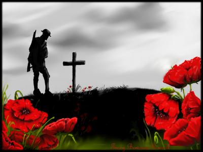 Drawn poppy flanders field The That Fields crosses on