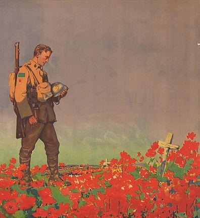 Drawn poppy flanders field Flanders Flanders Pin Fields best