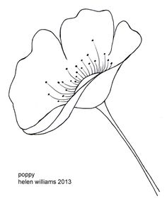 Drawn poppy lisianthus Routine Poppy interrupted lime: floral