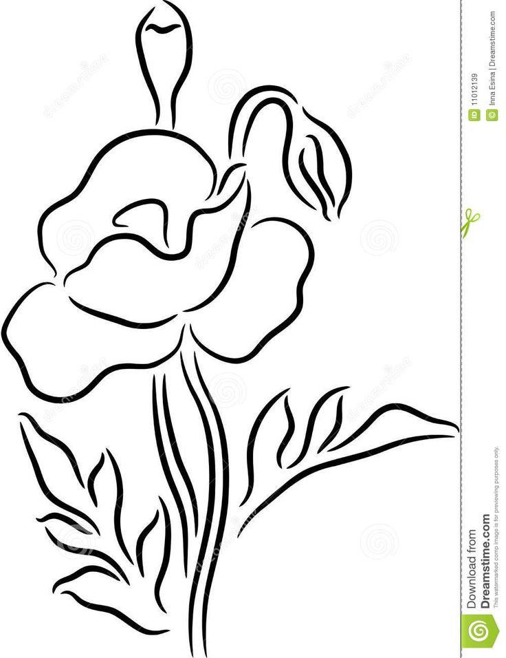 Drawn poppy one Keywords Suggestions Drawing on Pinterest
