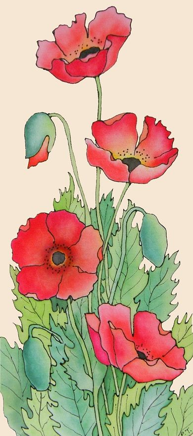 Drawn poppy oriental poppy Ideas Townsend Silk Pauline best