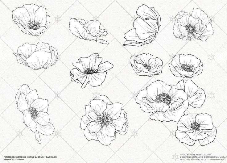 Drawn poppy outline 25+ VECTOR on Poppy Pinterest