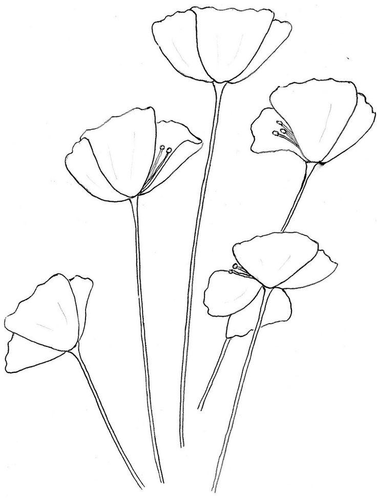 Drawn poppy outline Pinterest 25+ Gallery ideas Poppy