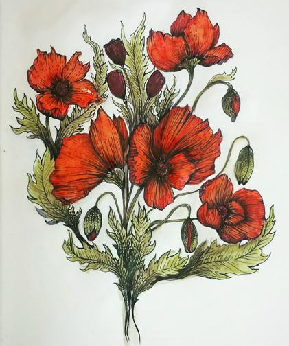 Drawn poppy pen and ink Pen Poppies Projects 4d3dd506 Ink