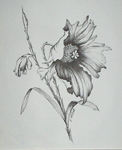 Drawn poppy pen and ink Poppy Ink Handmade Amazon Poppy