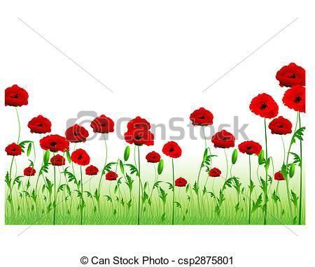 Drawn poppy poppy field Poppy with copy Vector green