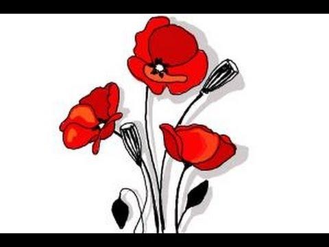 Drawn poppy poppy field Draw How How to Poppy