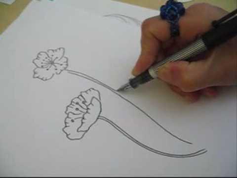 Drawn poppy poppy field To poppy  How a