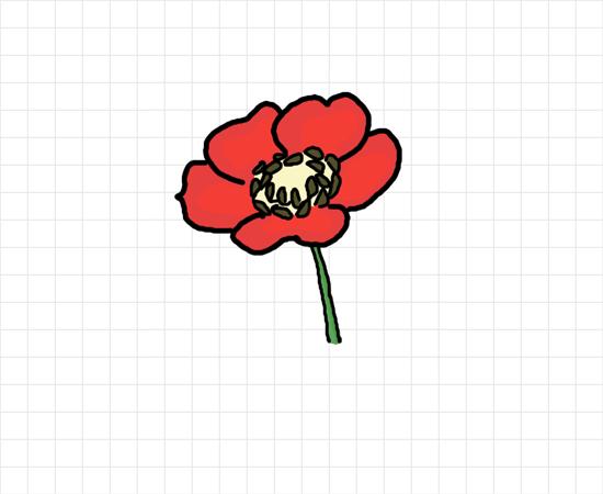 Drawn poppy poppy flower Poppy draw Pinterest to draw