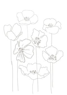 Drawn poppy printable A Poppies make  at