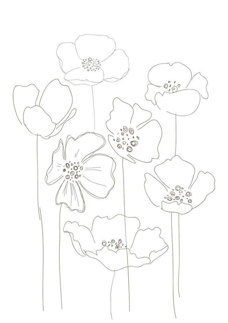 Drawn poppy printable A Poppies make interesting print