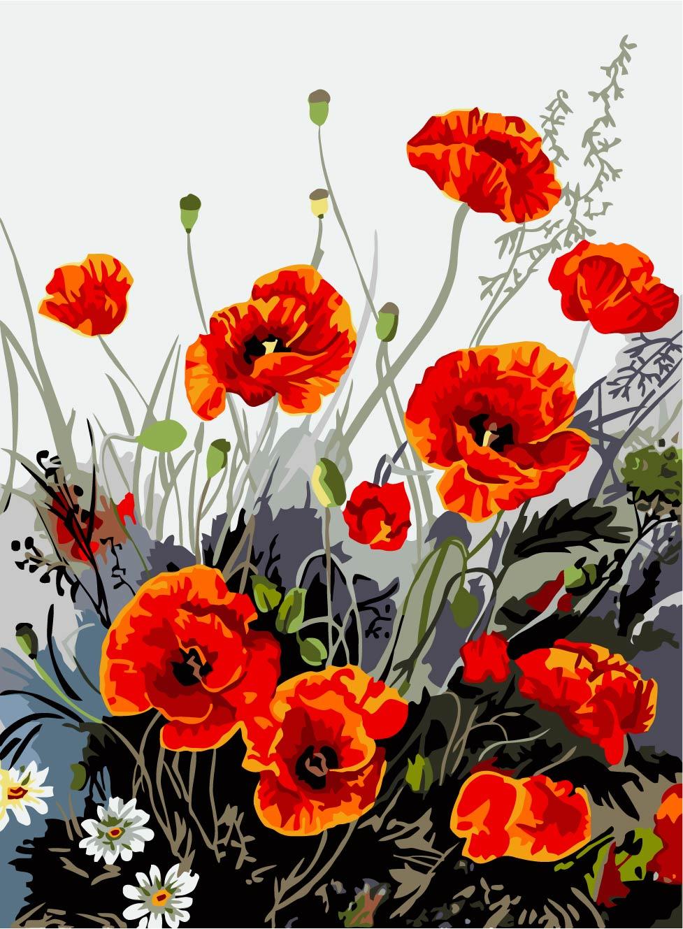 Drawn poppy real flower Kupuj Poppy Popularne drawing