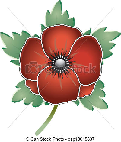 Drawn poppy rememberence Remembrance Remembrance  csp18015837 csp18015837