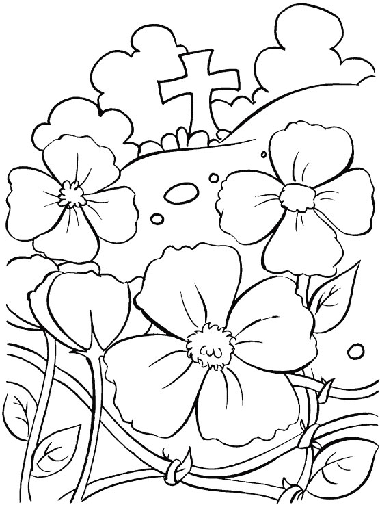 Drawn poppy remembrance sunday Remembrance kids Free Day Free