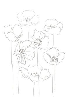 Drawn poppy simple Poppy … · Pinteres… Bernadette_Pascua