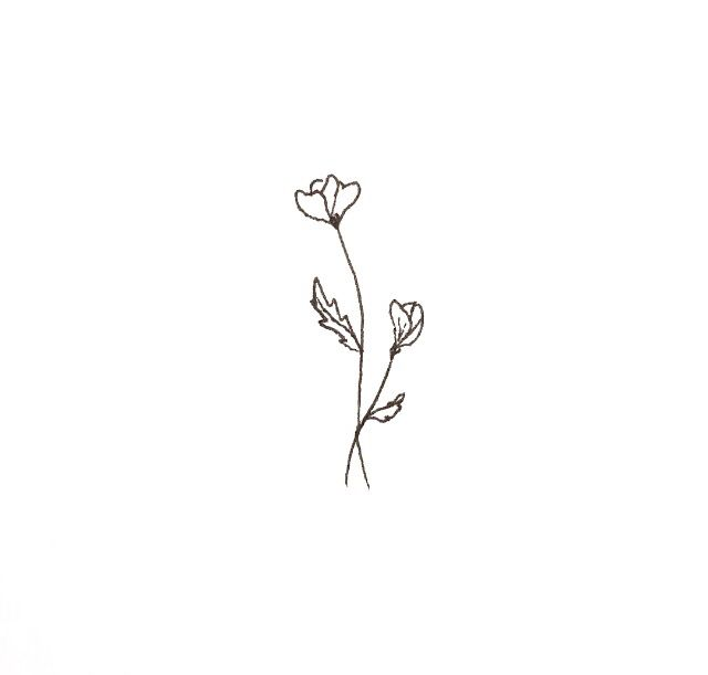 Drawn poppy simple Flower Pin Tattoo! on this