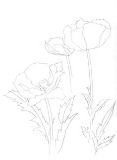 Drawn poppy stroke With Painters the Stroke how