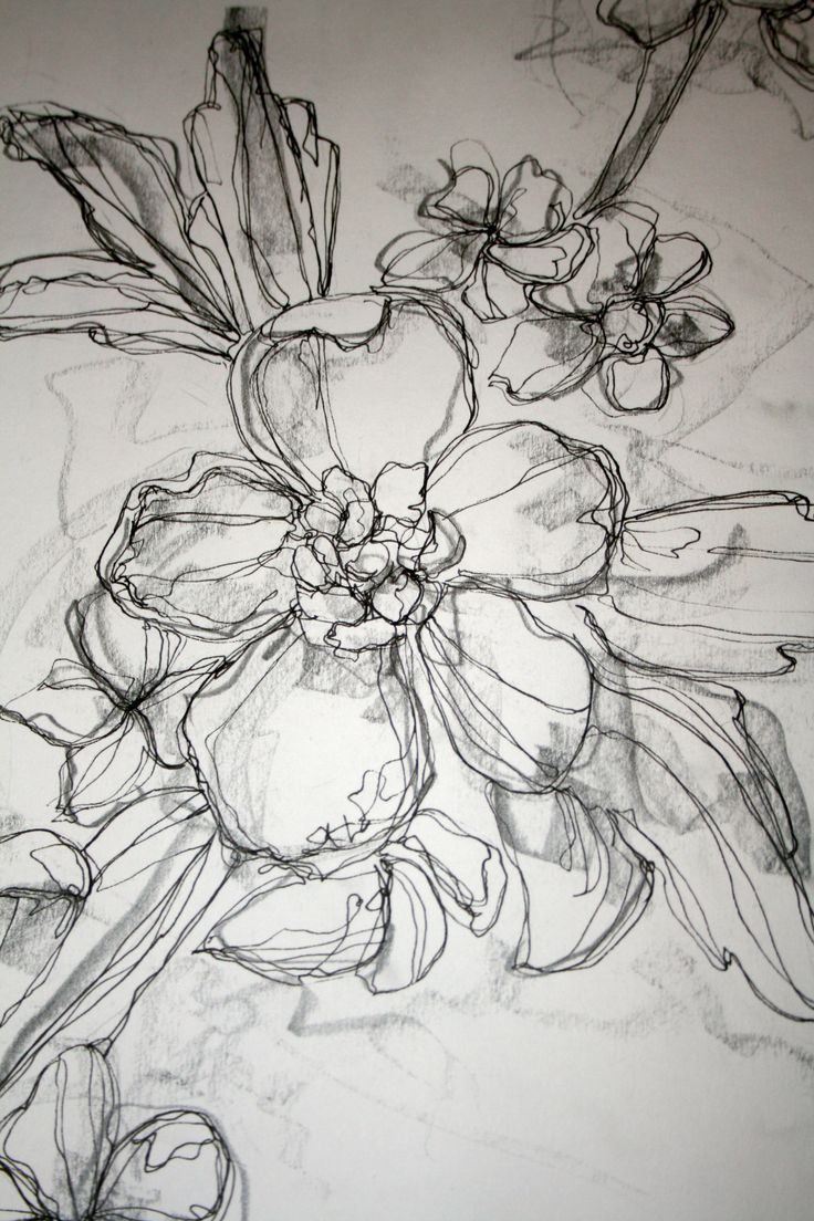 Drawn poppy wall This Floral I would an