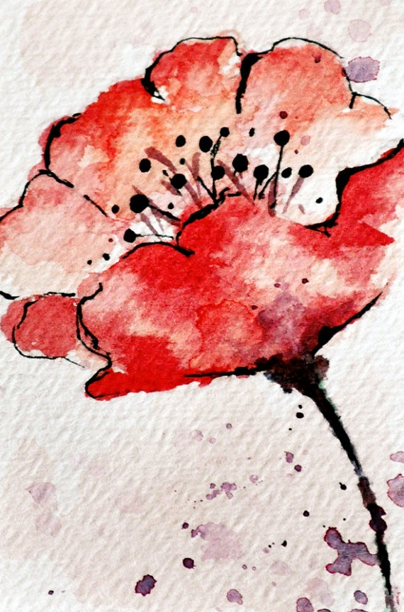 Drawn poppy watercolor Poppy Best More on 25+