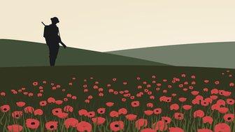 Drawn poppy ww1 poppy Field Schools poppies and Remembrance