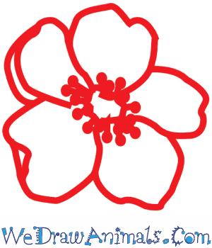 Drawn poppy ww1 poppy Tutorial to Poppy a Flower