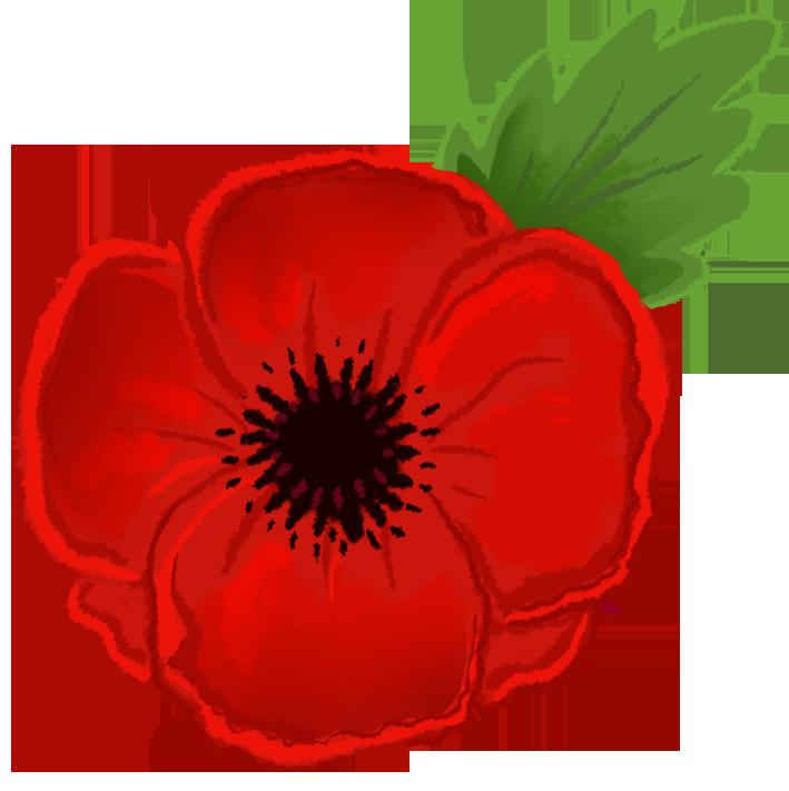 Red Flower clipart poppy flower #6