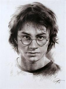 Drawn portrait graphite Graphite Potter Matt  Portrait