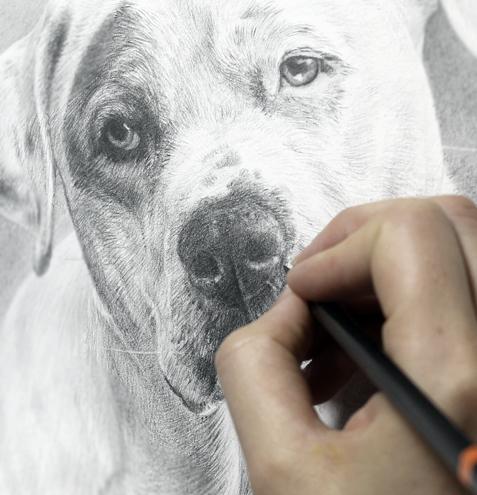 Drawn portrait hand drawn Pencil Portraits Hand Portraits by