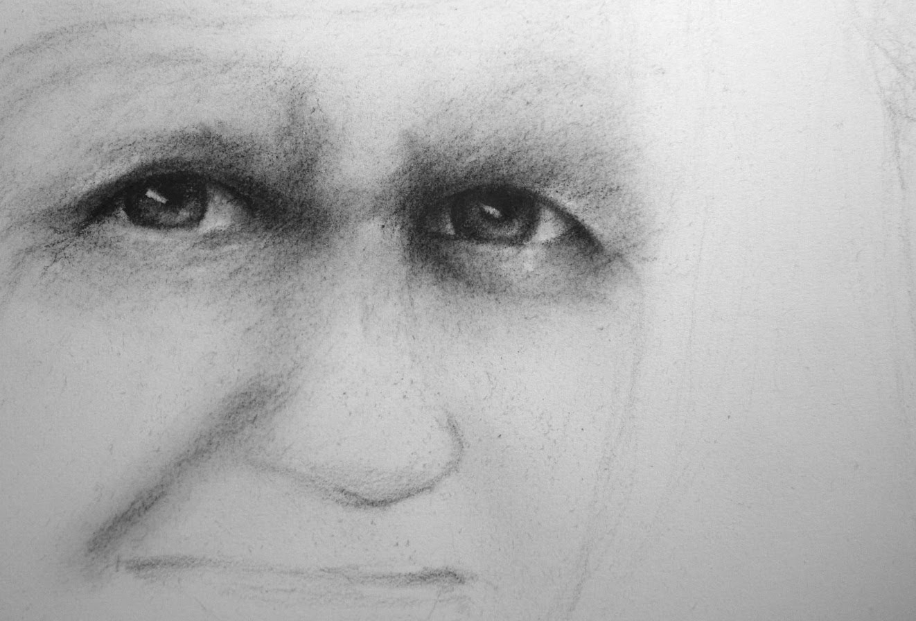 Drawn portrait human face Drawing Portrait face Part tutorial